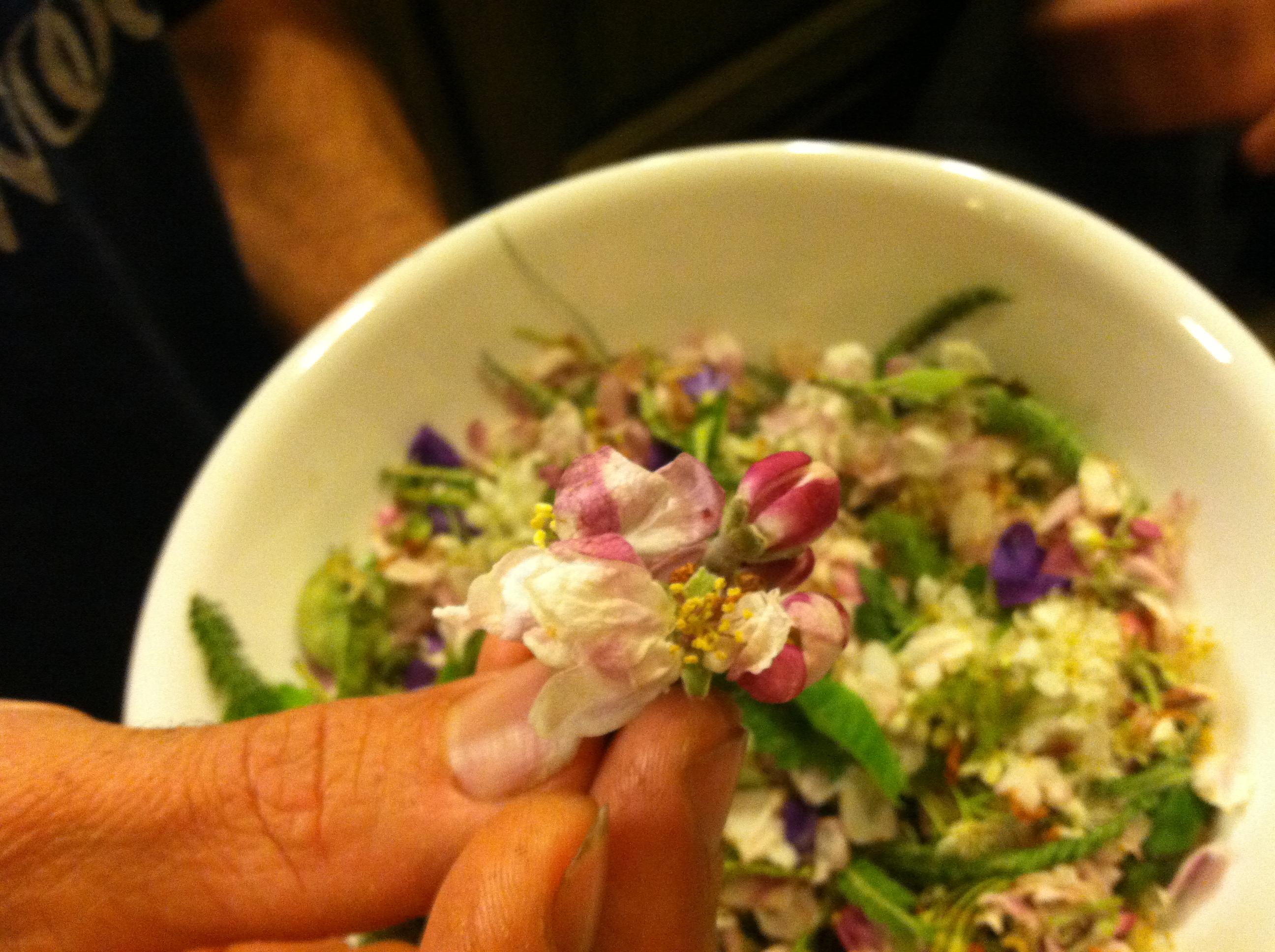 flower-harvest