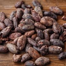 cacao-bean-2522918_640